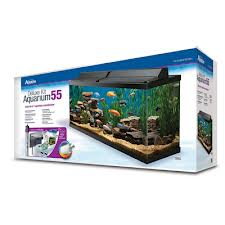 How The Aqueon 55 Can Help Your Goldfish Living Environment