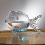 Goldfish Bowl – Is A Bowl An Easy Way To Care For A Goldfish?