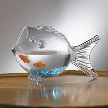 Goldfish bowl is a bowl an easy way to care for a for How to take care of fish tank